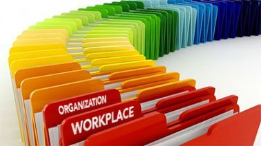 organization in the workplace